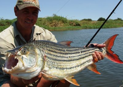 shackletons tiger fish fishing lodges upper zambezi zambia